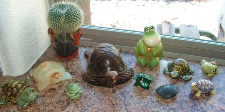 turtles-004
