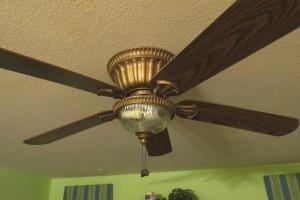 ceiling fan 002